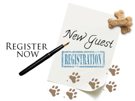 New Guest Registration